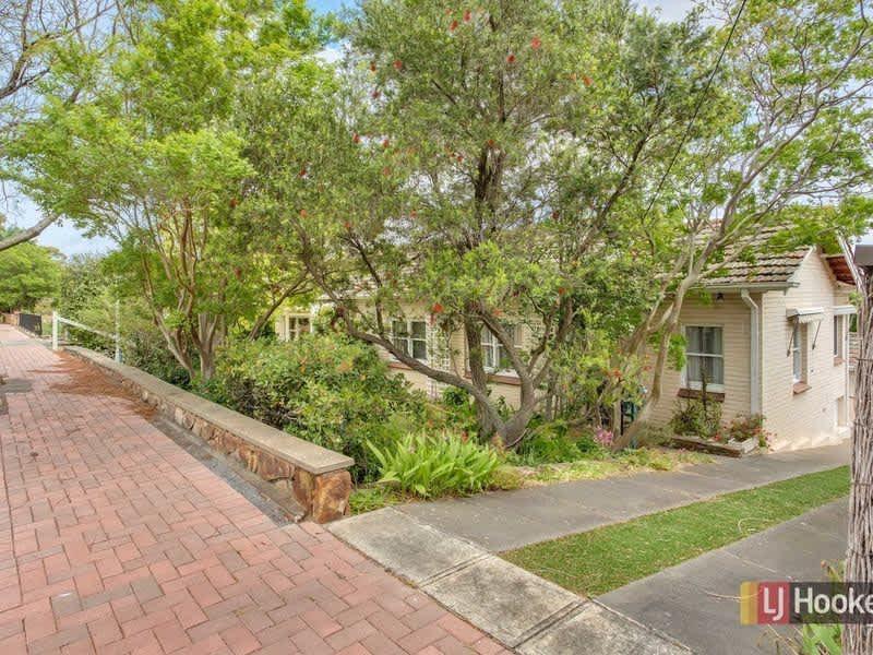 Housesitting assignment in Glen Osmond, South Australia, Australia