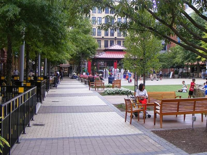 Housesitting assignment in Rockville, Maryland, United States