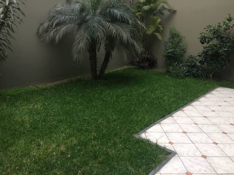 Housesitting assignment in Surco, Peru