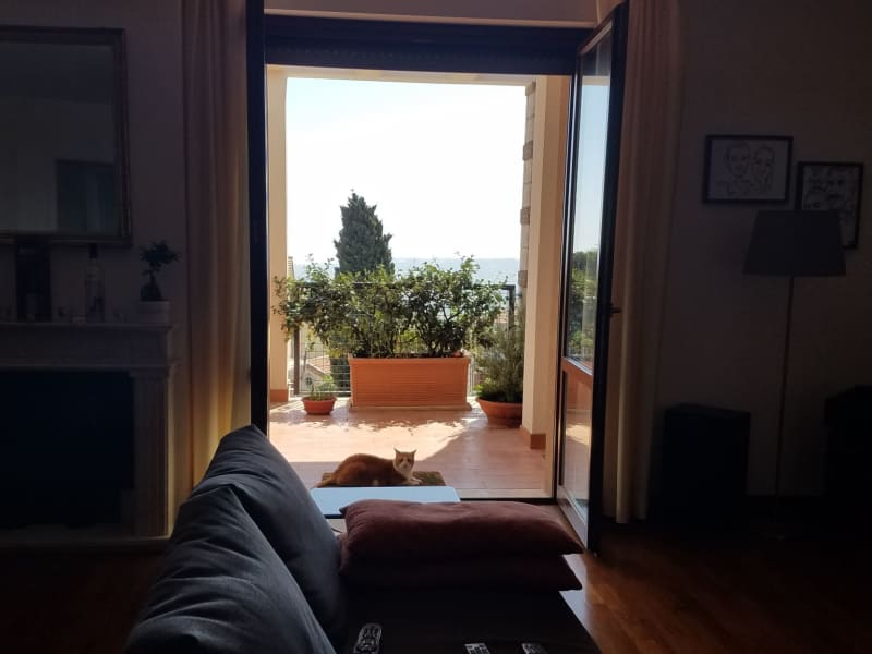 Housesitting assignment in Recanati, Italy