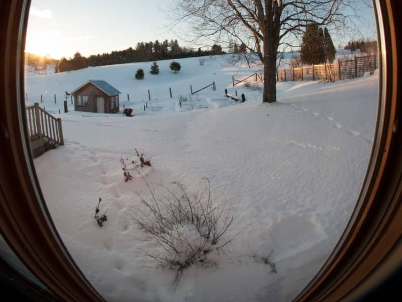 Housesitting assignment in Mayo, Quebec, Canada