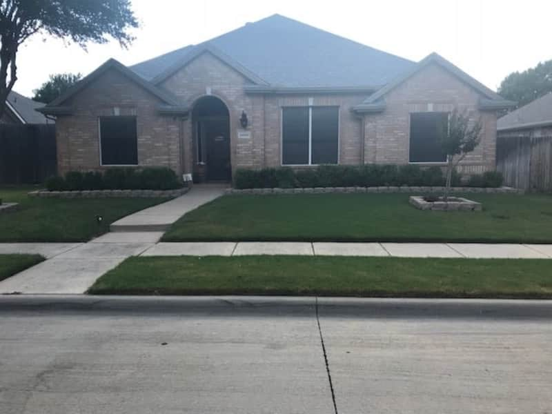 Housesitting assignment in The Colony, Texas, United States