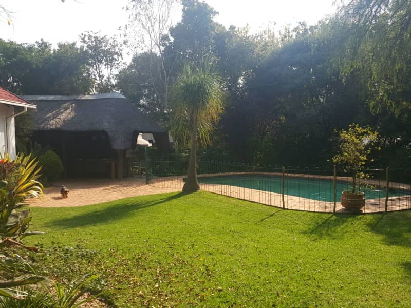 Housesitting assignment in Sandton, South Africa