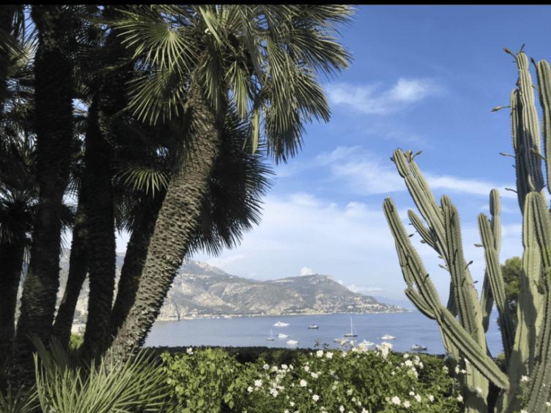 Housesitting assignment in Monaco, Monaco