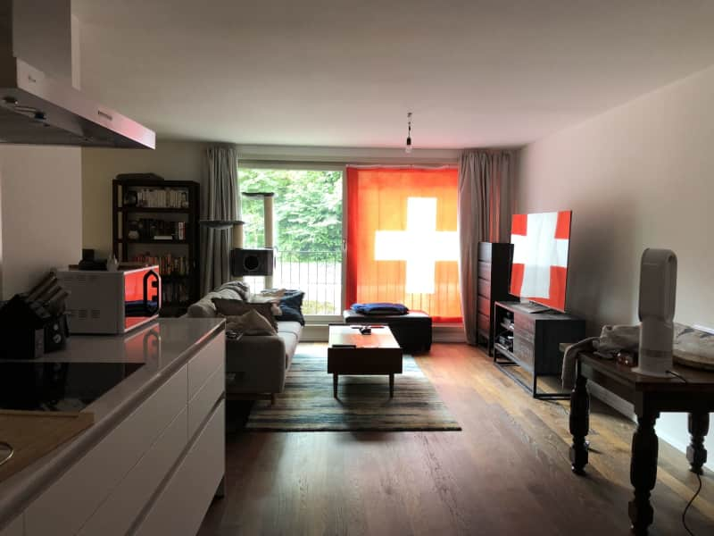 Housesitting assignment in Zürich (Kreis 2), Switzerland