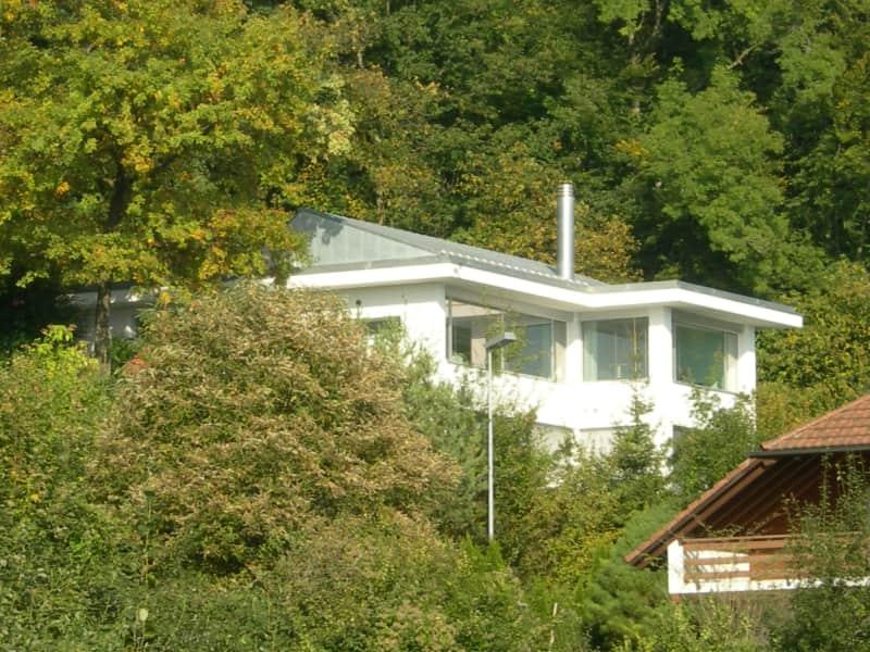 Housesitting assignment in Weggis, Switzerland