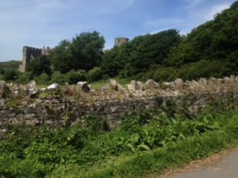 Housesitting assignment in Manorbier, United Kingdom