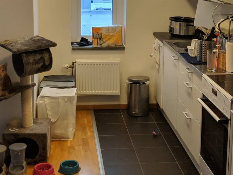 Housesitting assignment in Malmö, Sweden