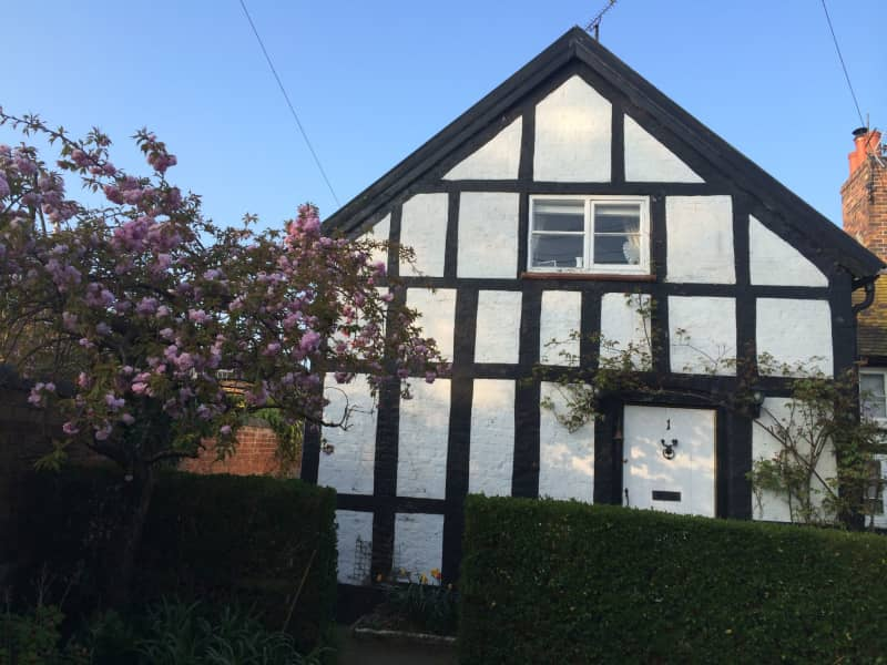 Housesitting assignment in Marbury, United Kingdom