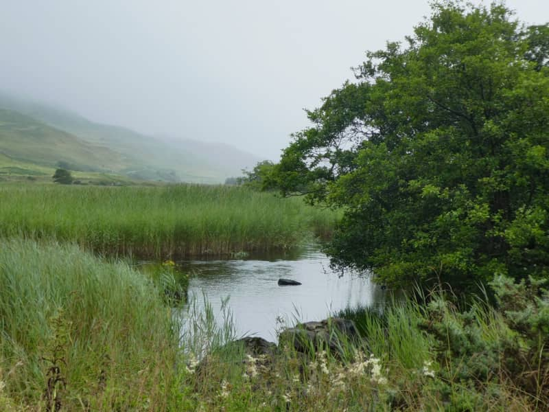 Housesitting assignment in Isle Of Mull, United Kingdom