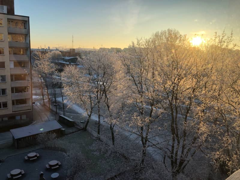 Housesitting assignment in Solna, Sweden