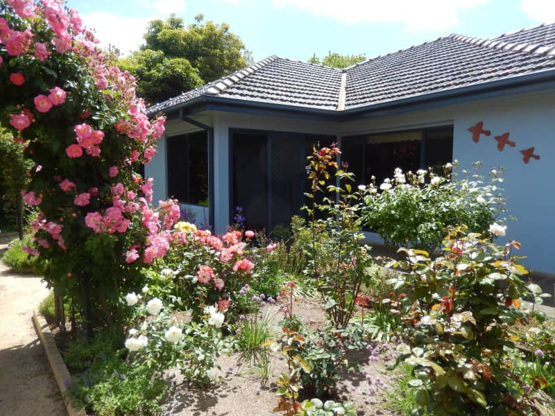 Housesitting assignment in Mirboo North, Victoria, Australia