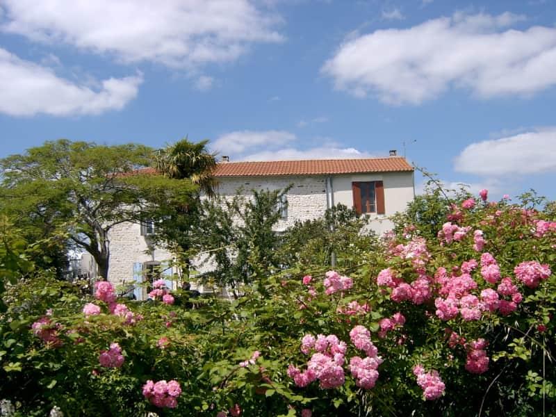 Housesitting assignment in Mirambeau, France