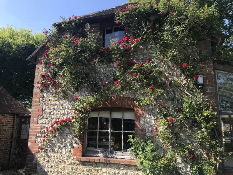 Housesitting assignment in Ditchling, United Kingdom
