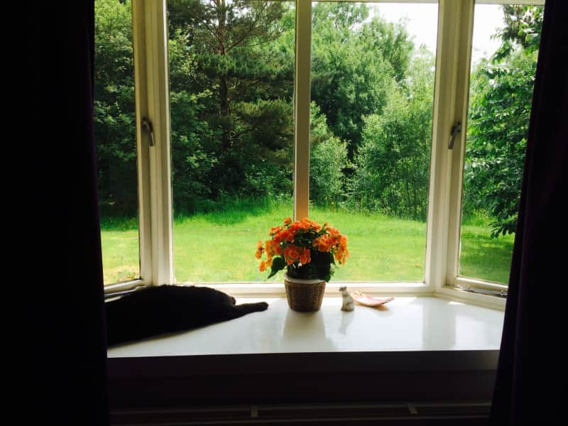 Housesitting assignment in Wilmslow, United Kingdom