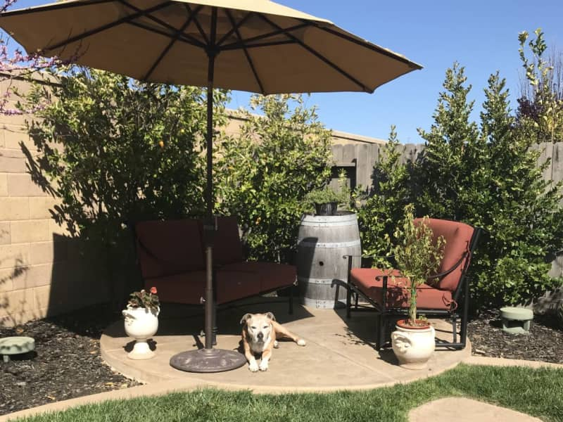 Housesitting assignment in El Dorado Hills, California, United States
