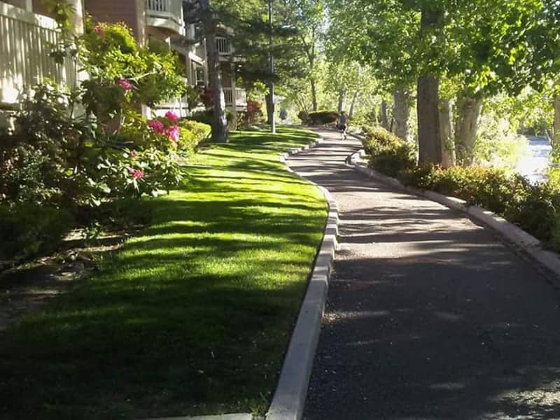 Housesitting assignment in Reno, Nevada, United States