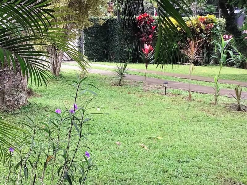 Housesitting assignment in Atenas, Costa Rica