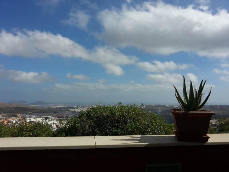 Housesitting assignment in Las Palmas de Gran Canaria, Spain