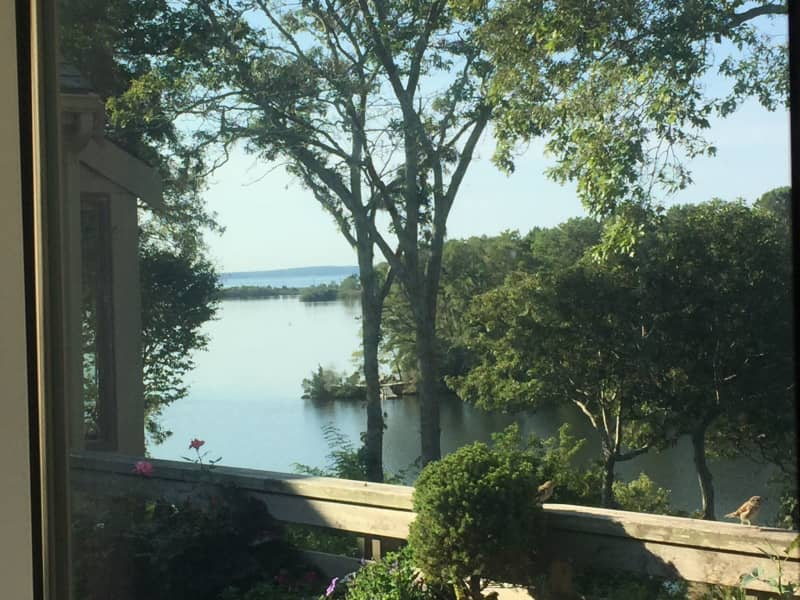 Housesitting assignment in Falmouth, Massachusetts, United States
