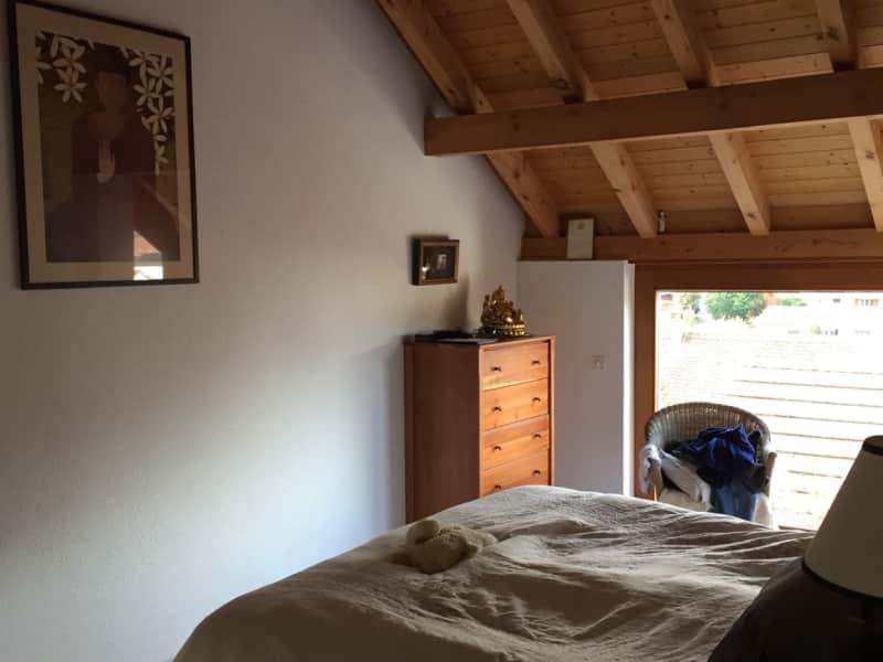 Housesitting assignment in Muttenz, Switzerland