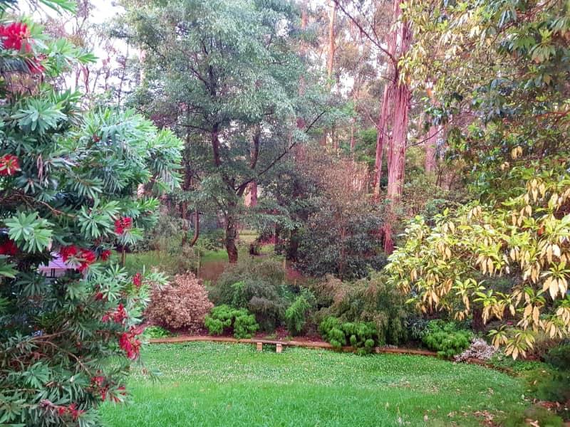 Housesitting assignment in Tecoma, Victoria, Australia