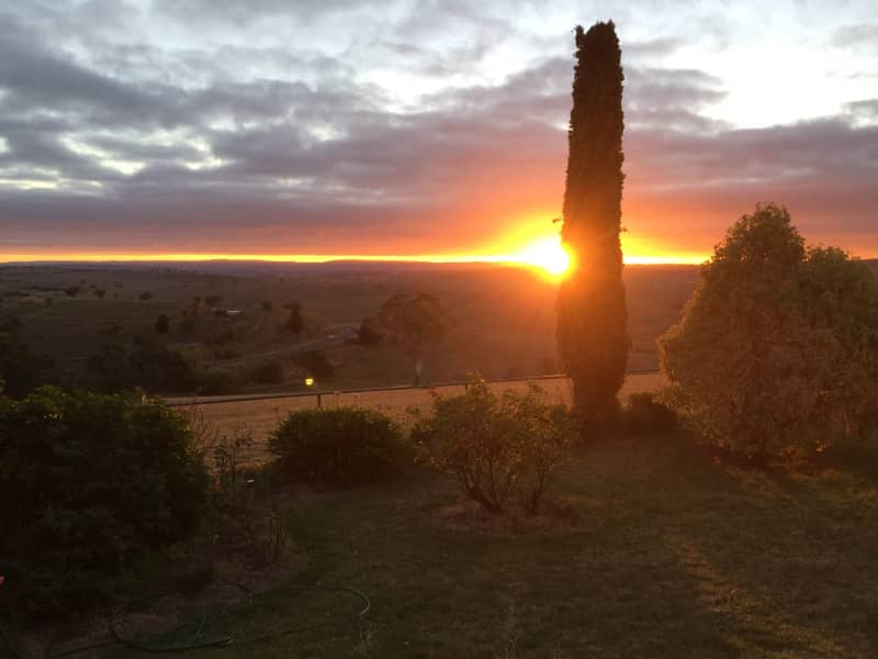 Housesitting assignment in Newbridge, New South Wales, Australia