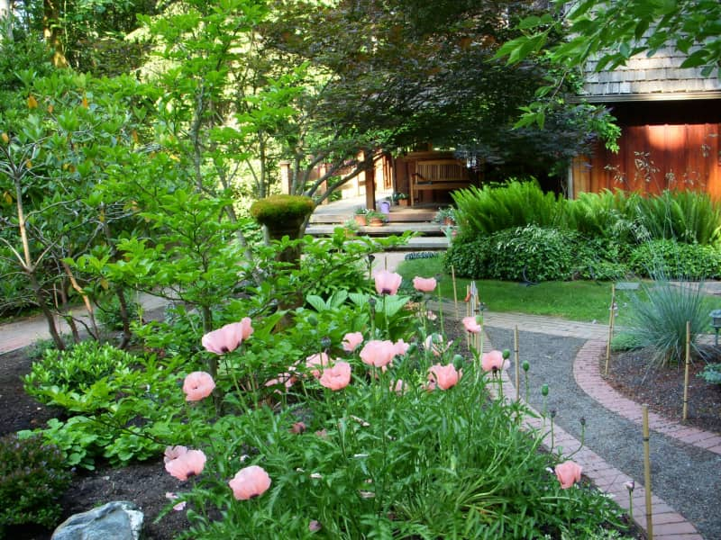 Housesitting assignment in Poulsbo, Washington, United States