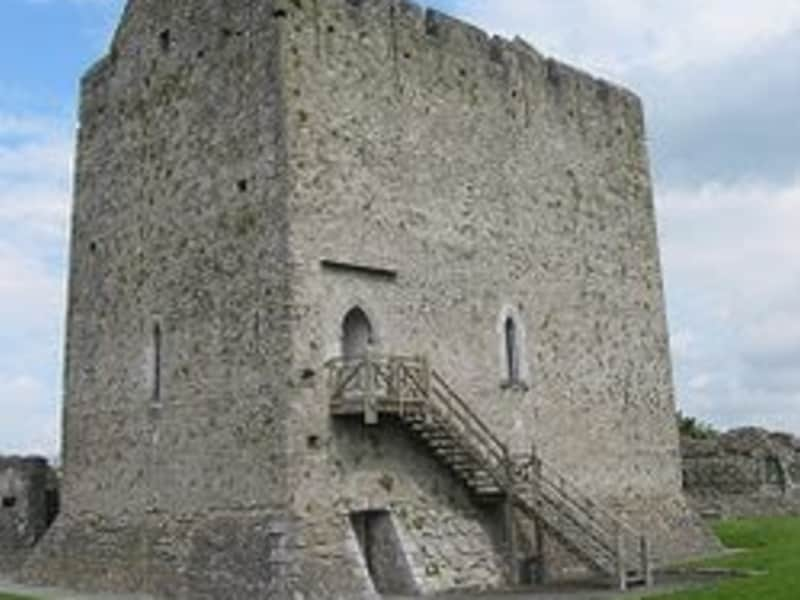 Housesitting assignment in Athenry, Ireland