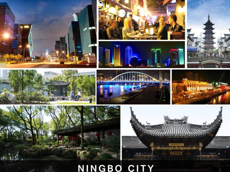 Housesitting assignment in Ningbo, China