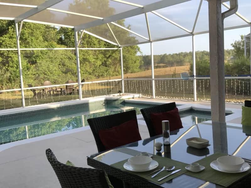 Housesitting assignment in Orlando, Florida, United States
