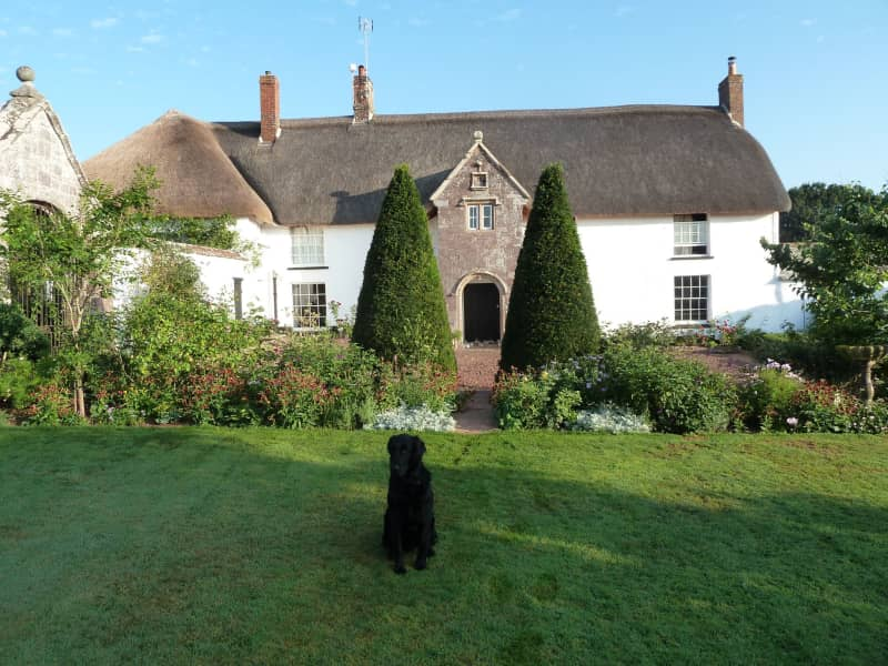 Housesitting assignment in Crediton, United Kingdom