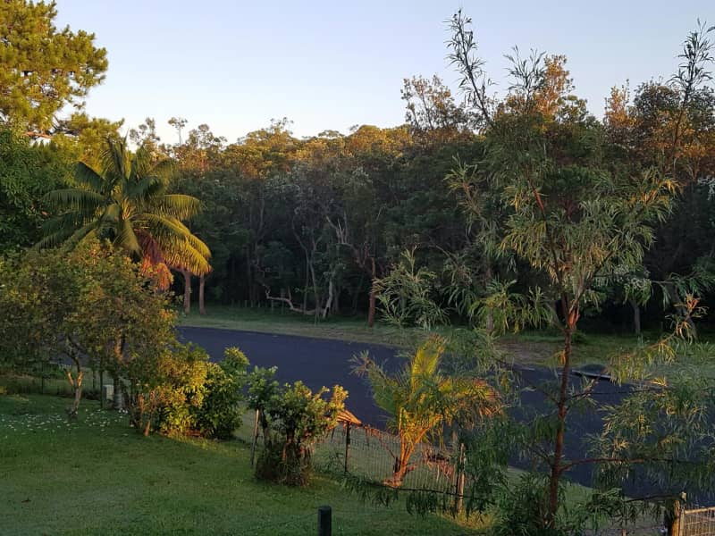 Housesitting assignment in Red Rock, New South Wales, Australia