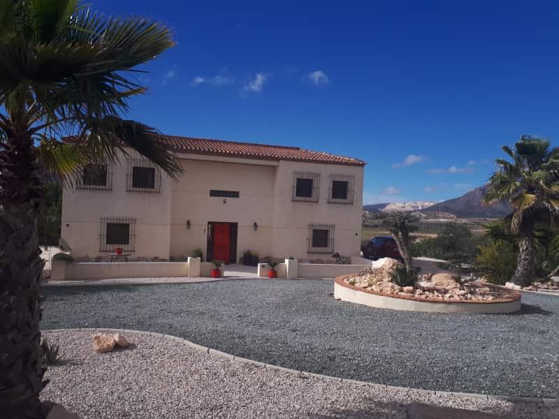 Housesitting assignment in Barbarroja, Spain