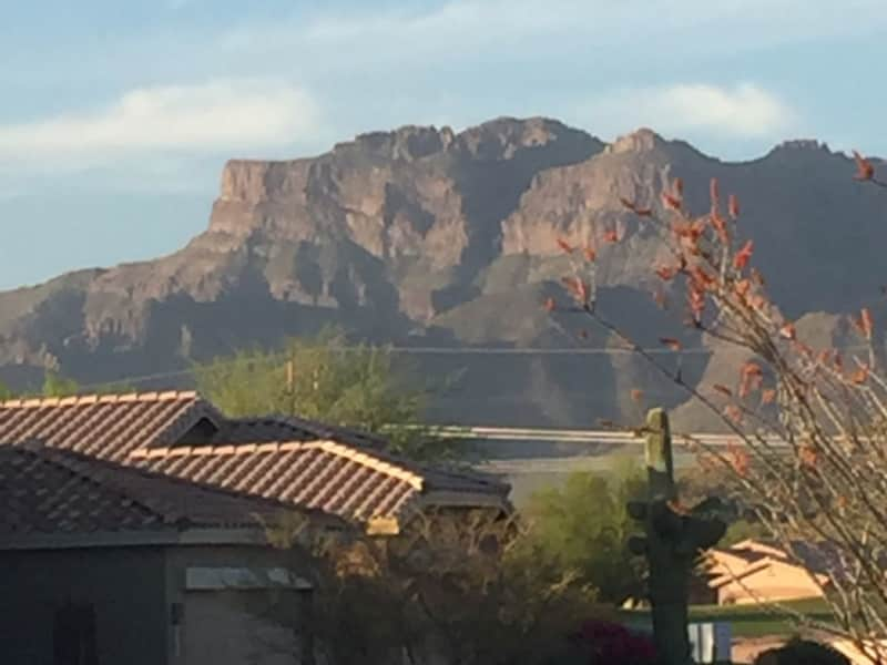 Housesitting assignment in Phoenix, Arizona, United States