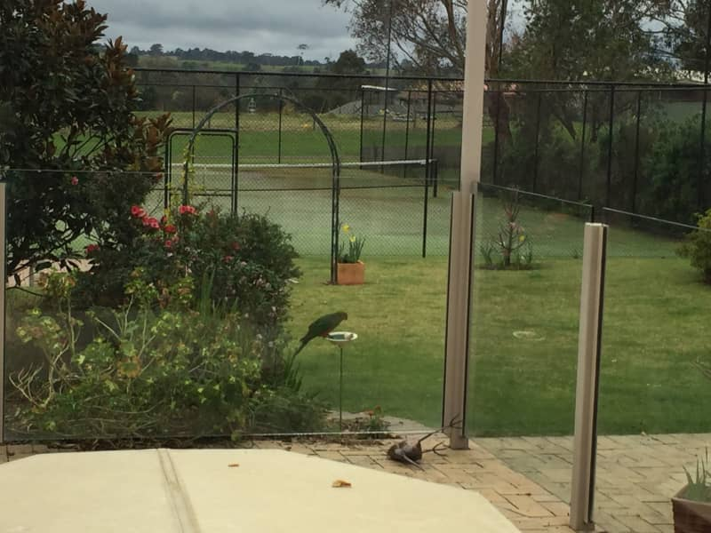 Housesitting assignment in Bairnsdale, Victoria, Australia