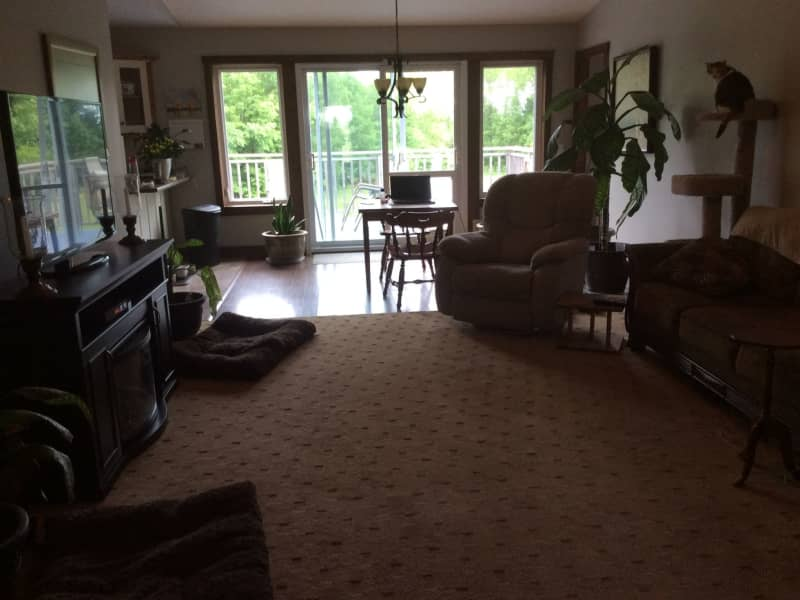 Housesitting assignment in Orillia, Ontario, Canada