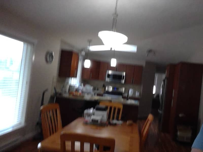 Housesitting assignment in Saanichton, British Columbia, Canada