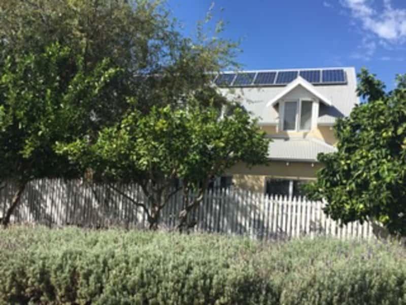 Housesitting assignment in Cottesloe, Western Australia, Australia
