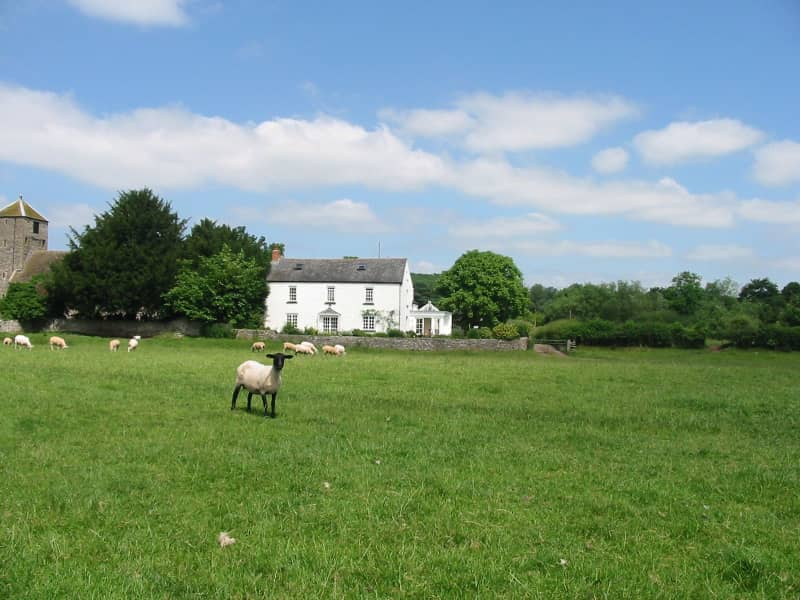 Housesitting assignment in Abergavenny, United Kingdom