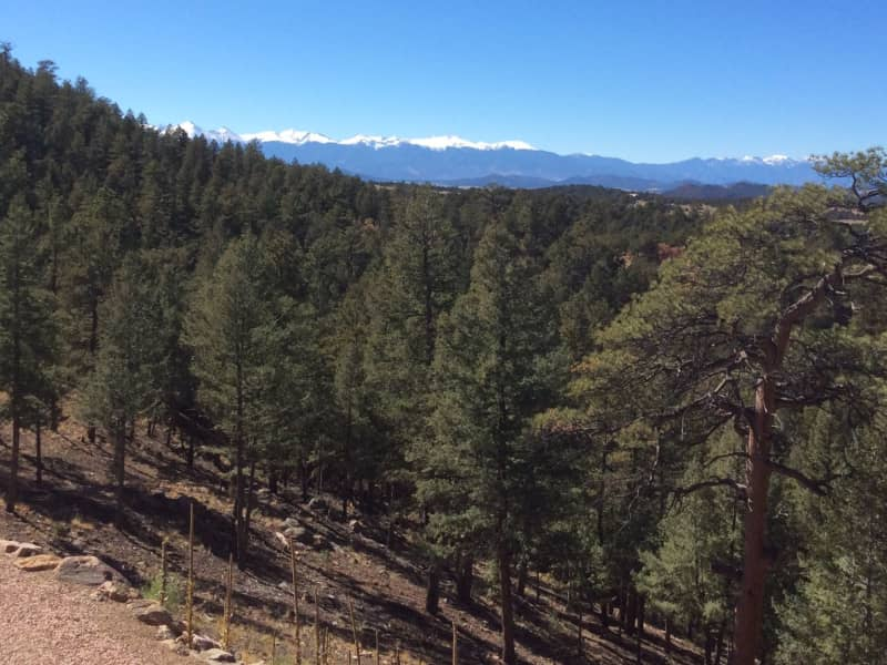 Housesitting assignment in Westcliffe, Colorado, United States