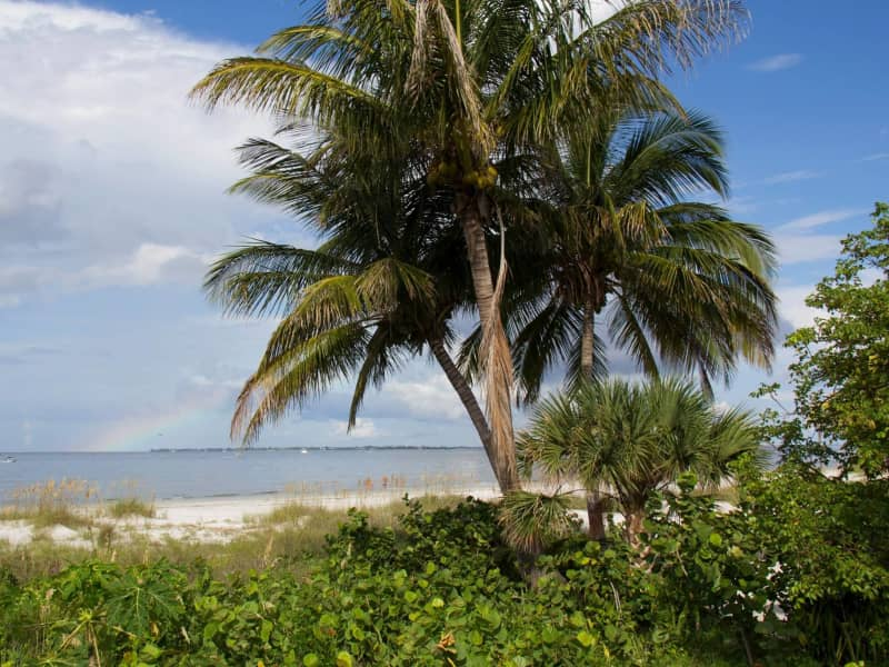 Housesitting assignment in Fort Myers Beach, Florida, United States
