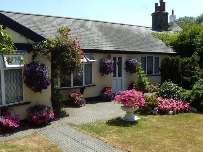 Housesitting assignment in Sidcup, United Kingdom