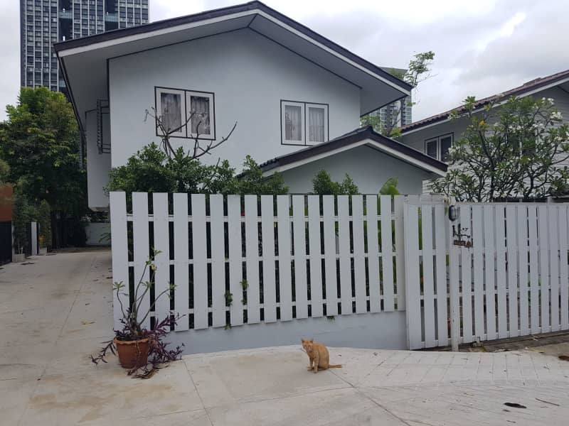 Housesitting assignment in Sathorn, Thailand