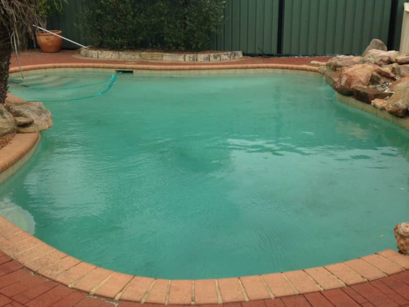 Housesitting assignment in Leeming, Western Australia, Australia