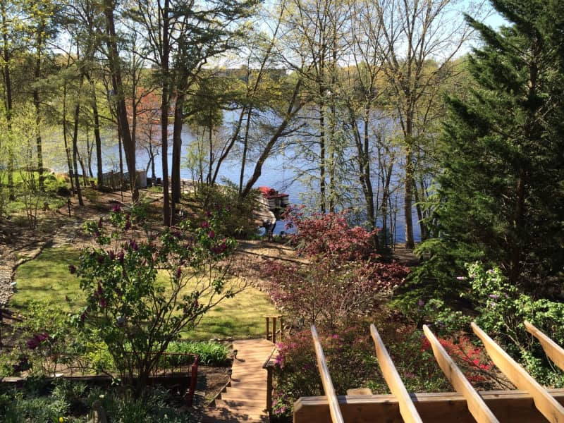 Housesitting assignment in Falls Church, Virginia, United States