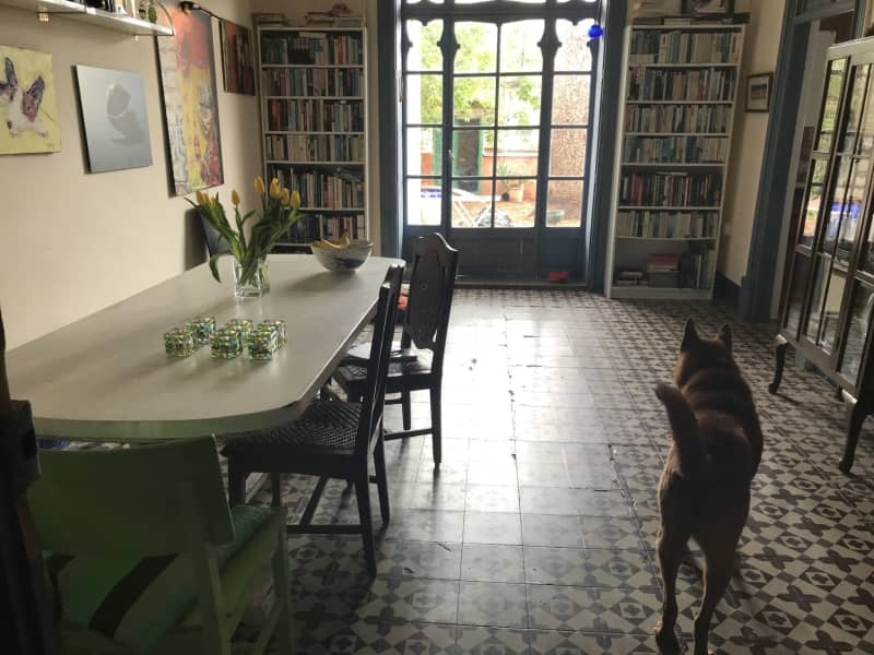 Housesitting assignment in Palma, Spain