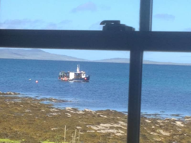Housesitting assignment in Orkney, United Kingdom