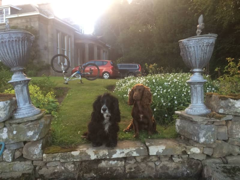 Housesitting assignment in Hopeman, United Kingdom
