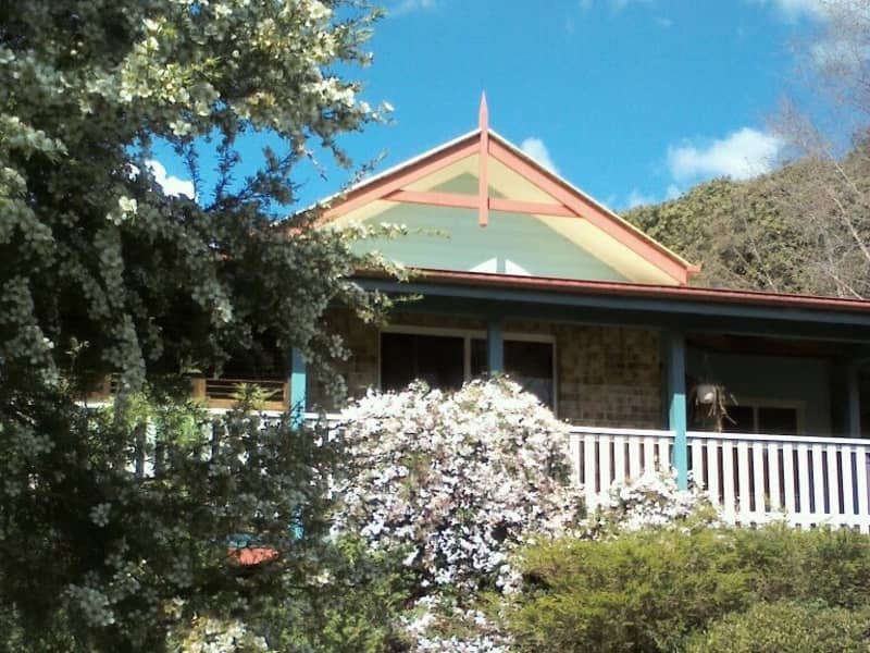 Housesitting assignment in Tuckombil, New South Wales, Australia